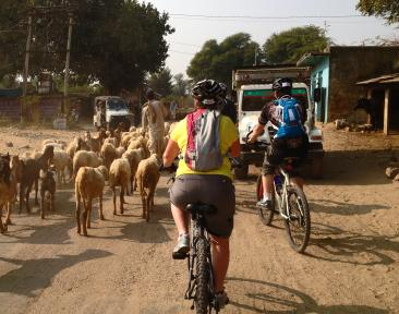 Charity Bike Ride in India