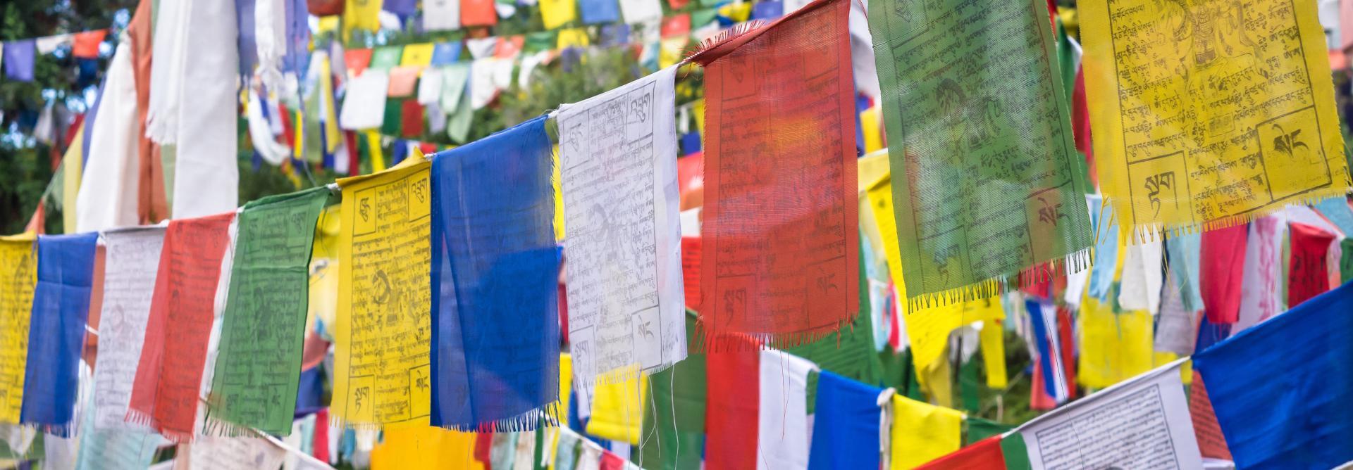 Himalayan Dalai Lama - Space