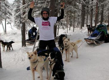 Dog Sledding Challenge in Sweden