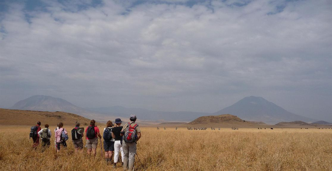 Group with zebra and volcanic ash cones in distance – day 2