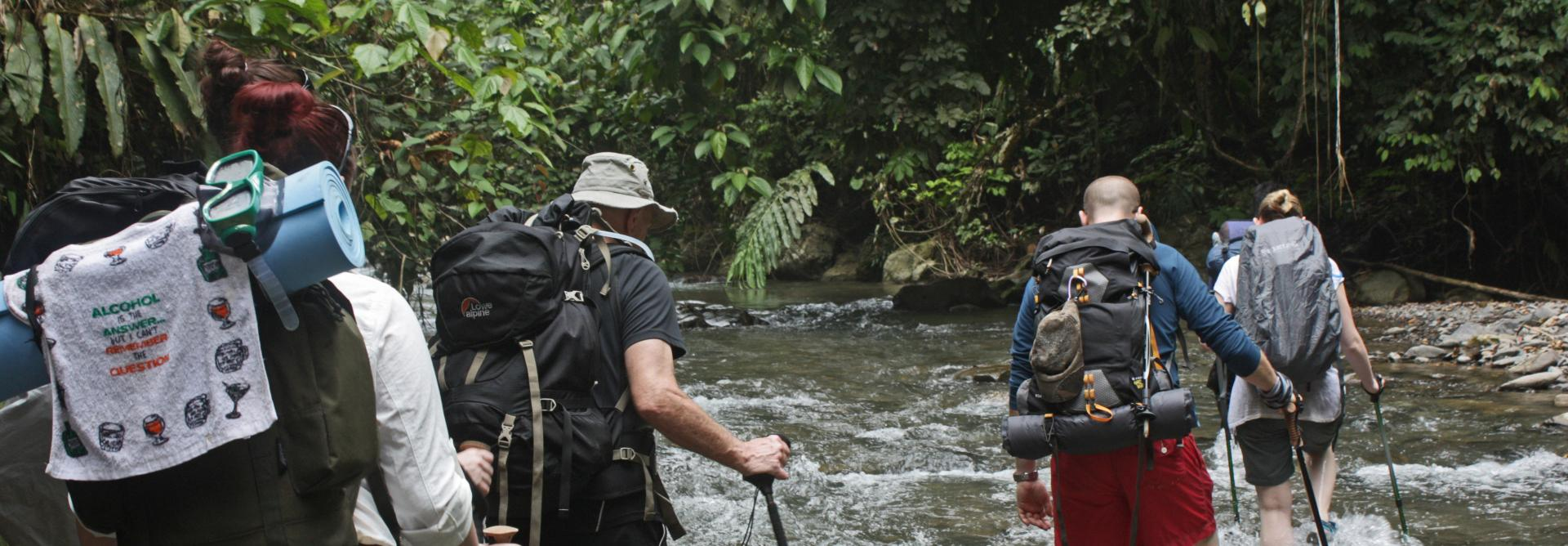 Sumatra Jungle Charity Trek in Indonesia