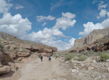 Grand Canyon Charity Trek in the USA